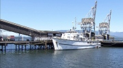 Water views: Former Navy vessel could be your home