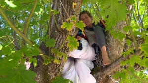 Seairra Courtemanche says she will do whatever it takes to stop the Cowichan Valley Regional District from cutting down a thousand-year-old maple tree in downtown Duncan. June 28, 2016. (CTV Vancouver Island)
