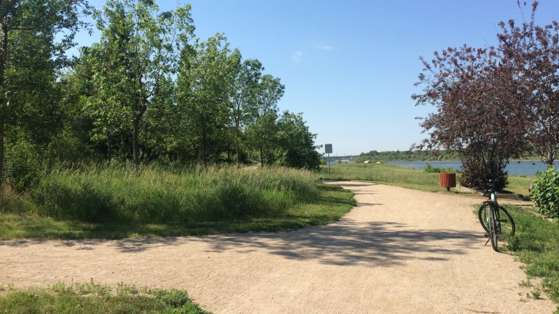 A trail within the Meewasin Valley Authority is pictured on June 29, 2016.