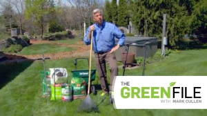 Mark Cullen tackles lawn care on this week's Green File