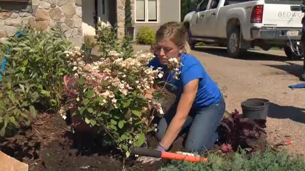 Kari Baker - Bedworx planting hydrangeas