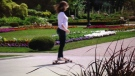 A young woman skateboards through Jackson Park in June, 2016.