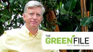 The Green File