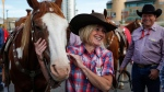 Alberta premier Rachel Notley pets a horse before the start of the Calgary Stampede parade in Calgary, Friday, July 8, 2016. (THE CANADIAN PRESS / Jeff McIntosh)