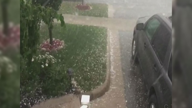 Caught on cam hail rocks southern ontario ctv news for Landscaping rocks windsor ontario