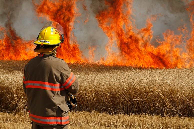 A firefighter looks on as a wheat field burns along Fischer-Hallman Road in North Dumfries on Tuesday, July 19, 2016. (Danny Bailey / Twitter)