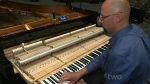 piano-tuner