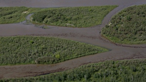 Oil is seen on the North Saskatchewan river near Maidstone, Sask on Friday July 22, 2016. Husky Energy has said between 200,000 and 250,000 litres of crude oil and other material leaked into the river from its pipeline. (Jason Franson/The Canadian Press)
