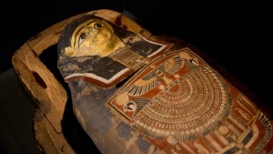 A 2,200-year-old Egyptian mummy on display in the Israel Museum in Jerusalem, on July 26, 2016. (Ariel Schalit / AP)