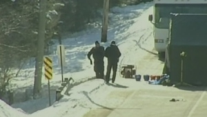 Police are shown at the scene of a grisly killing in Sault Ste. Marie, Ont., in this file photo.