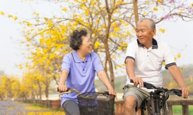 Chinese seniors study