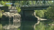 Bad boy 'Justin' beaver terrorizes B.C. town