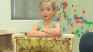CTV News Channel: Six-year-old buzzing beekeeper