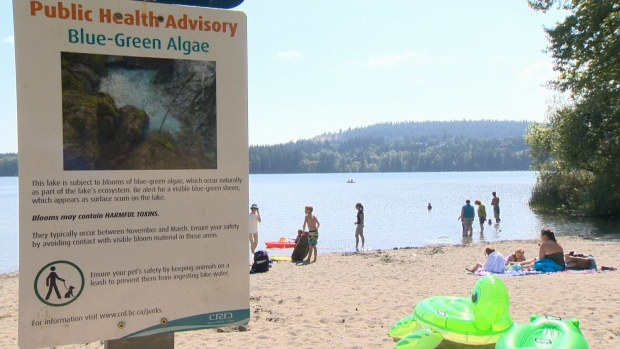 Beaver Lake closed for swimming due to algae bloom