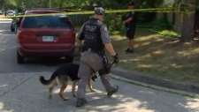 Hamilton police cancel amber alter