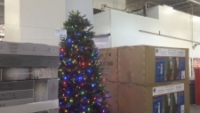 Christmas tree Costco
