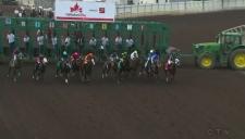 Horse Racing Alberta