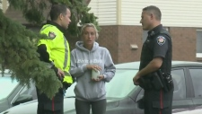 CTV Ottawa: Police shoot two dogs