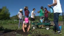 Gardening camp for kids