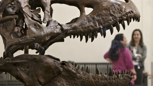 A cast of a Tyrannosaurus rex discovered in Montana greets visitors as they enter the Smithsonian Museum of Natural History in Washington on April 15, 2014. (AP / J. Scott Applewhite)