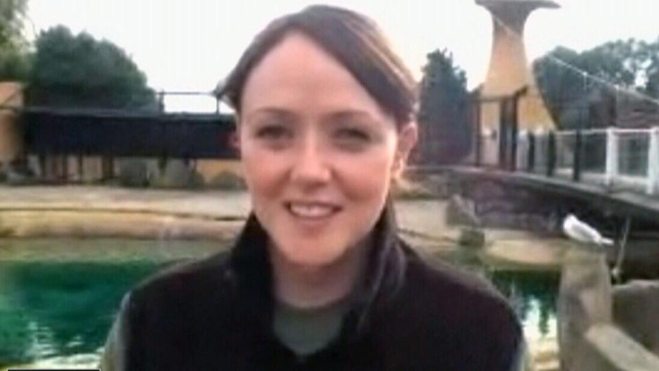 Dawn Nicholl, a senior penguin keeper at the RZSS Edinburgh Zoo, tells CTV News Channel about Sir Nils Olav's latest military promotion.