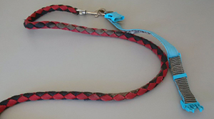 The dog, a young boxer-cross, was wearing a distinctive blue and grey collar and a red and black leash. (Handout)