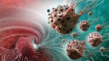 Bacteria-based nanorobots
