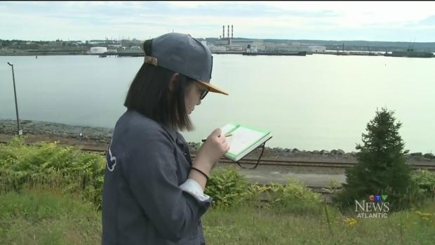 CTV Atlantic: McGill students studying Saint John