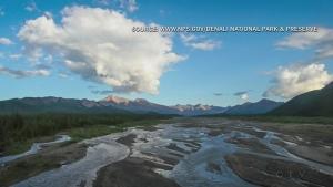 (Denali National Park and Preserve)