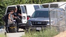 Chris Brown arrested in Los Angeles