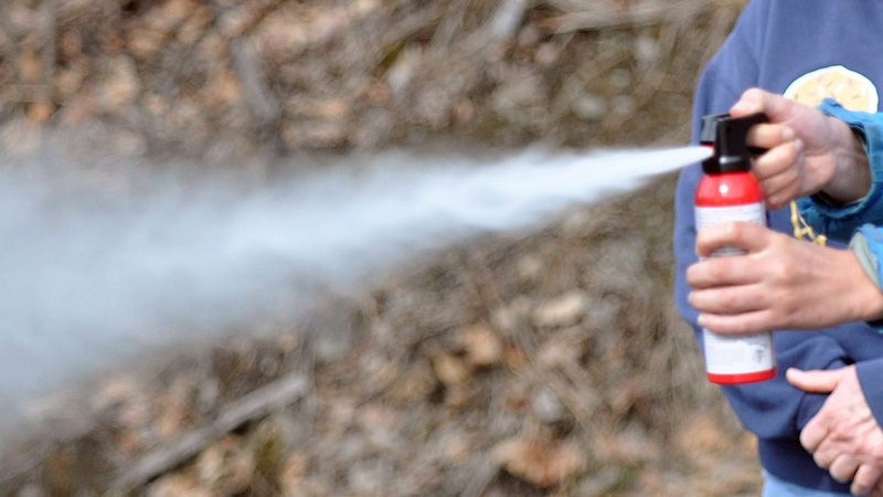 File photo of a can of bear spray being discharged.  (Alaska Star, Matt Tunseth)