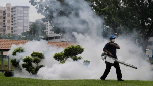 A worker fumigates drains and the gardens at a local housing estate where the latest case of Zika infections were reported from in Singapore on Thursday, Sept. 1, 2016. (AP / Wong Maye-E)