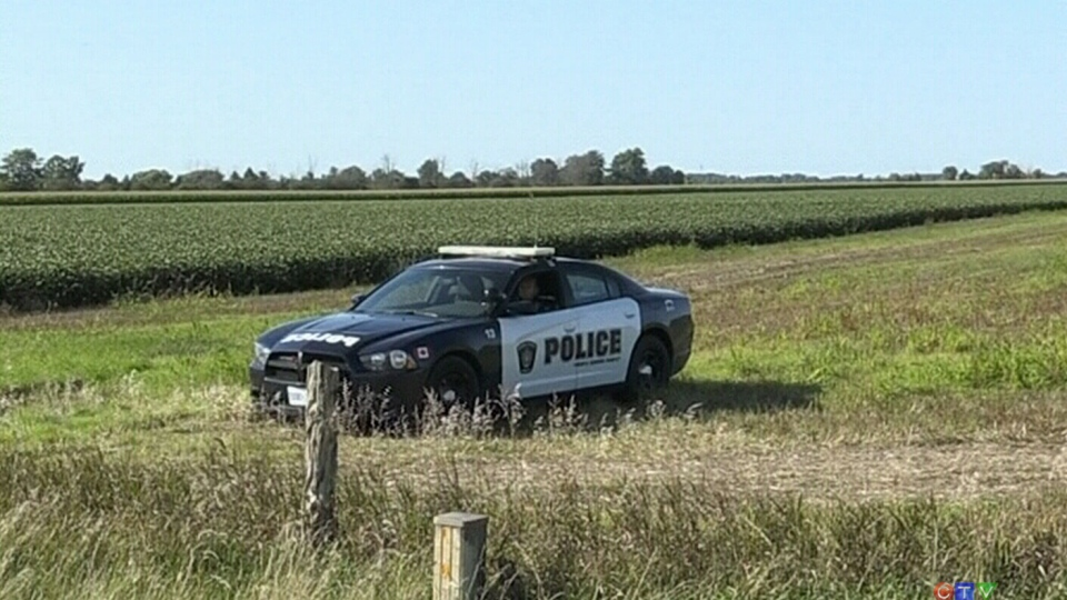 An officer in a police cruiser attends the scene after a plane crashed in a cornfield in Sarnia, Ont. killing the lone occupant, (CTV London).