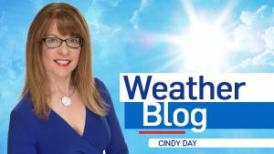 Cindy Day