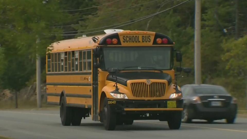 N.S. buses