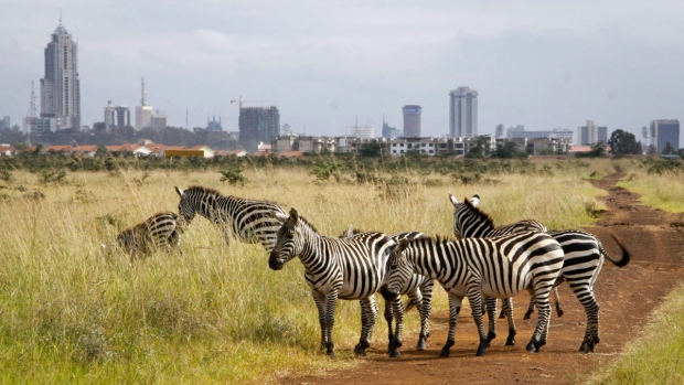 Nairobi National Park in Nairobi, Kenya