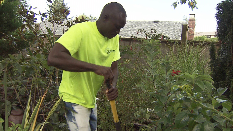 King of West African tribe returns to landscaping job in Canada | CTV News
