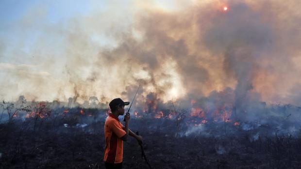 Peatland fire in Pemulutan, Indonesia