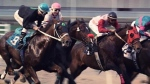 "Century Casinos named as successful applicant to own, build and run ""A"" Track Horse Racing in Edmonton area"