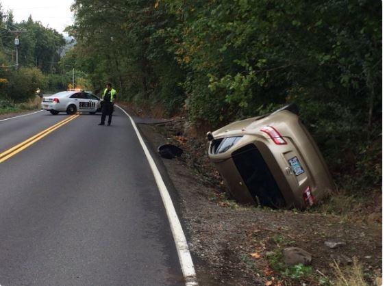 Spider causes car crash in Oregon