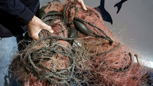 FILE - In this Nov. 30, 2015 file photo, Capt. David Anderson of Captain Dave's Dolphin and Whale Watching Safari in Dana Point, Calif., shows a net a whale was found entangled in. (AP Photo/Christine Armario, File)