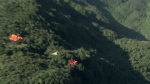 CTVNews.ca: Wingsuit pilots soar at competition