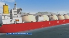LNG project
