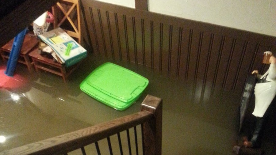 The flooded basement of a home in Tecumseh, Ont., on Thursday, Sept. 29, 2016. (Courtesy: Stephanie Turkington)
