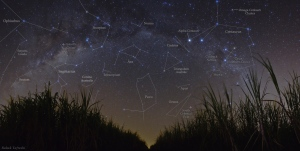 Star constellations are shown in the sky in this diagram from NASA. (Babak Tafreshi / NASA)