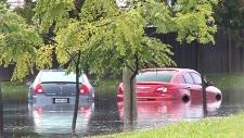 CTV Windsor: Flood aftermath