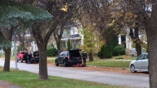 Cathedral Avenue investigation