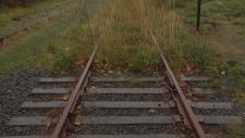 E&N rail line overgrown