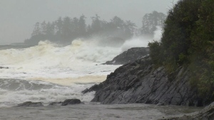 Wind warnings are in effect along East Vancouver Island and the Southern Gulf Islands Wednesday while special weather statements remain for other parts of Vancouver Island.