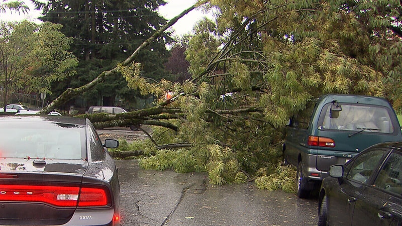 Tens of thousands of residents of B.C.'s South Coast were left in the dark again as a third storm broke land in as many days.